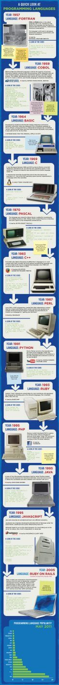 programming languages infographic