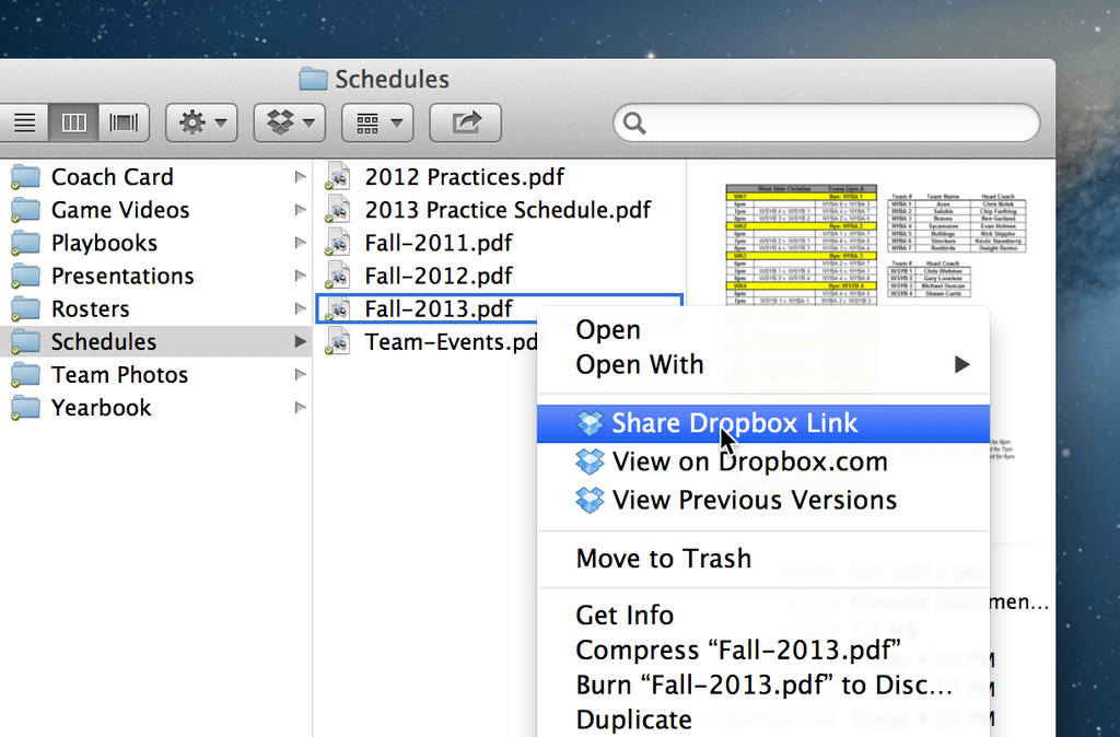 dropbox share option