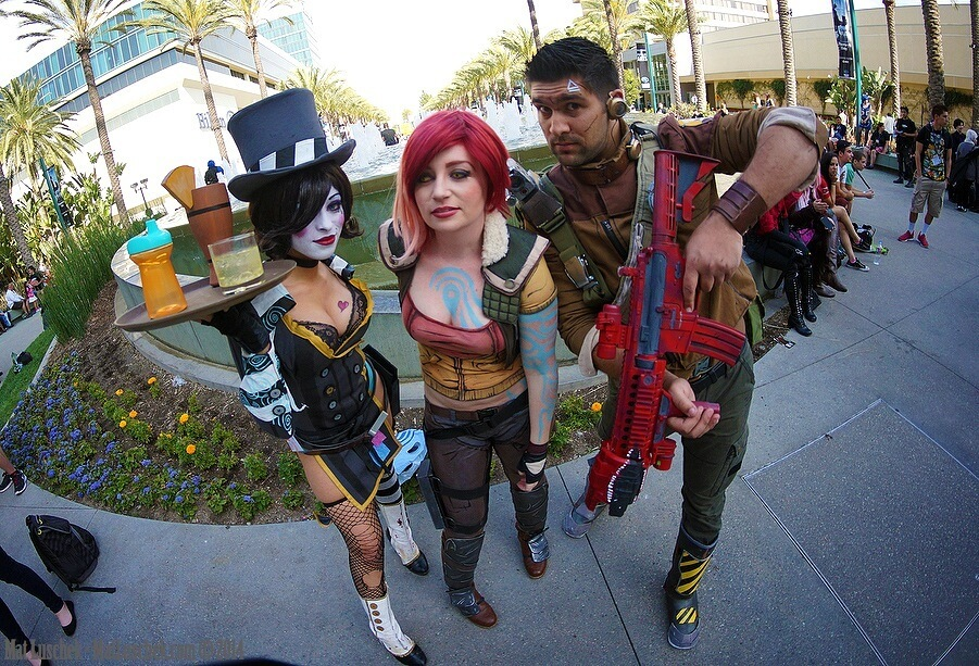 Borderlands gang