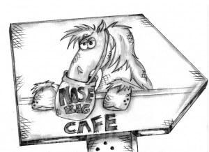 Pony Palace Illustration